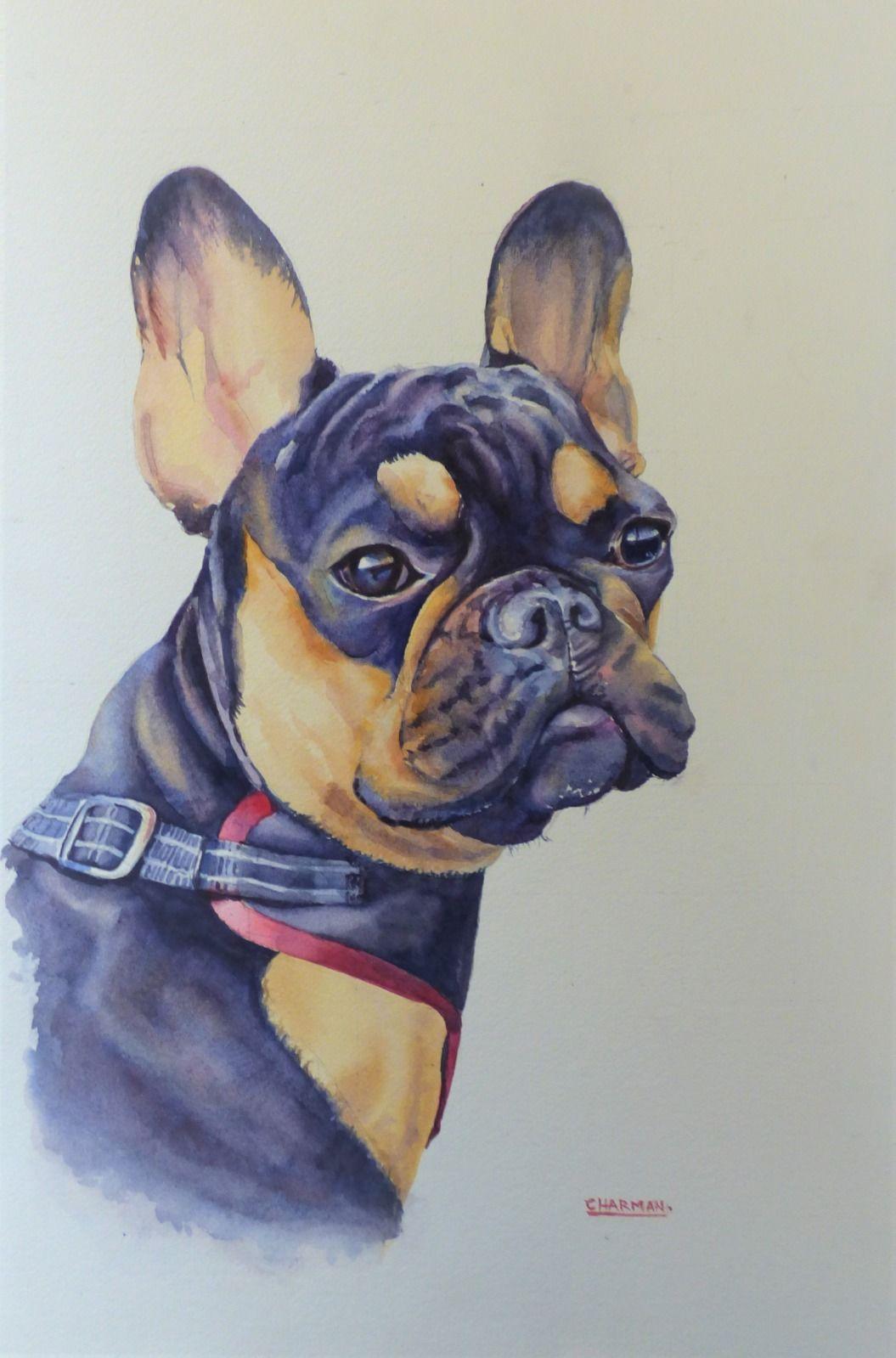 Tia- My Daughter's French Bulldog