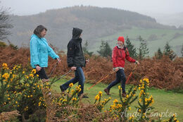 Nordic Walking on Hergest Ridge with Ali from the Walking Hub