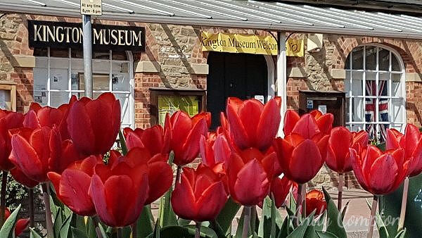 Kington Museum, well worth a visit!
