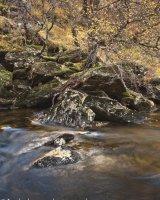 Autumn Gleann Meadail