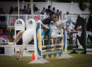 AGShow-26