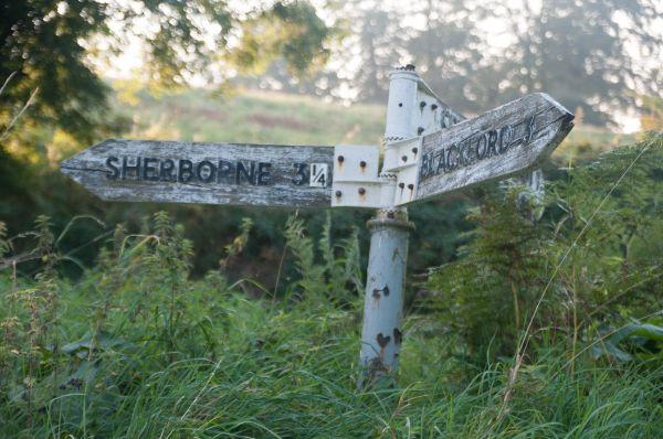 Near Sherborne