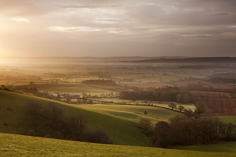 Morning Light On Raddon HIlls