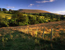 Summertime, Pendle Hill