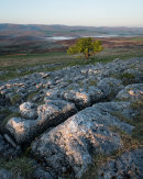 Above Sunbiggin Tarn