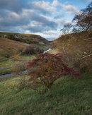 Autumn, Smardale Gill 02