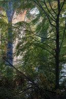 Autumn, Wayoh Viaduct