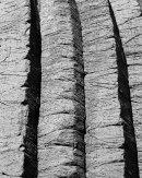 Basalt Columns, Staffa