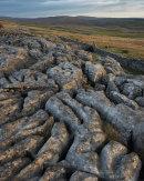 Borrins Moor Rocks, Ribblesdale