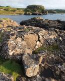 Coast, Glengorm, Mull