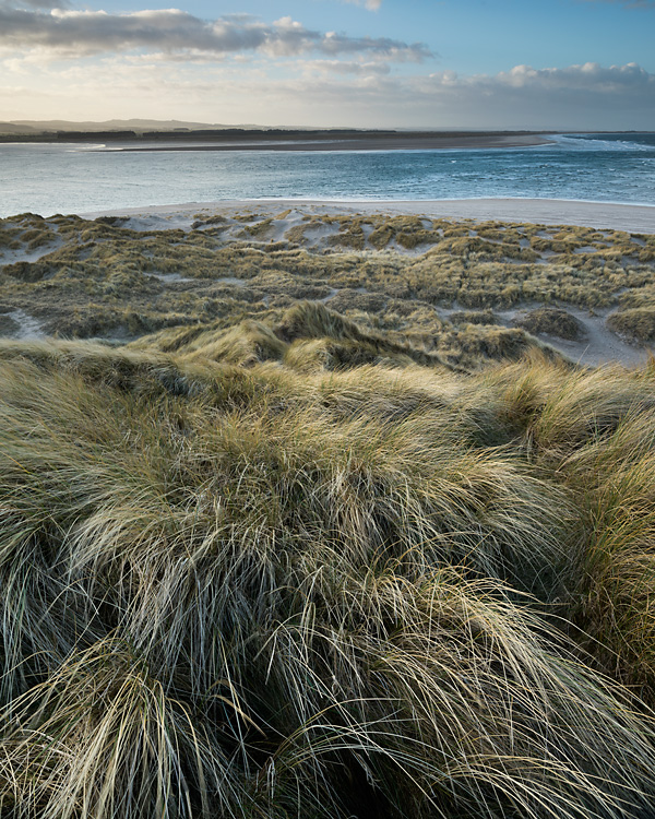 Dunes, Budle Point