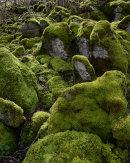 Florescent Boulders, Hutton Roof