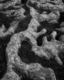 Flowing Stone, Ribblehead