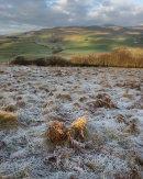 Frosty Morning, Towards Ingleborough