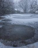 Frozen Pond, Cox Green