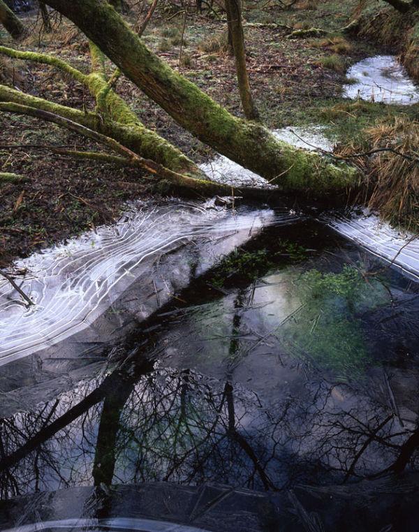 Frozen Pool 01