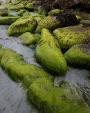 Green Boulders, Doun Helzie, Sanday