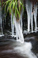 Icicles, Roddlesworth River
