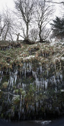 Icicles, Halliwell Fold Scar 03