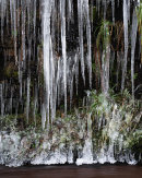 Icicles, Halliwell Fold Scar 05