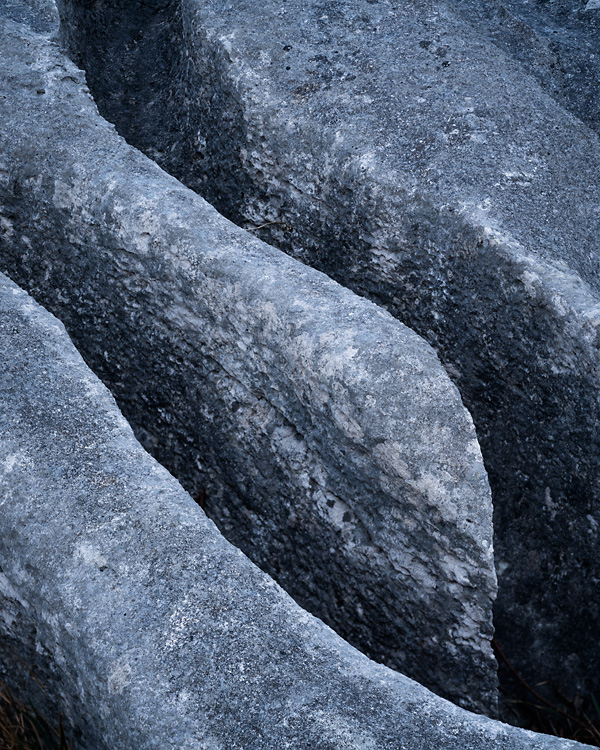 Limestone, Lancelot Clark Storth 03