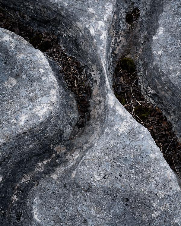 Limestone Detail, Lancelot Clark Storth 06