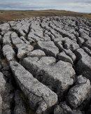Limestone Pavement, Gordale