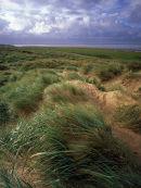 Lytham Dunes