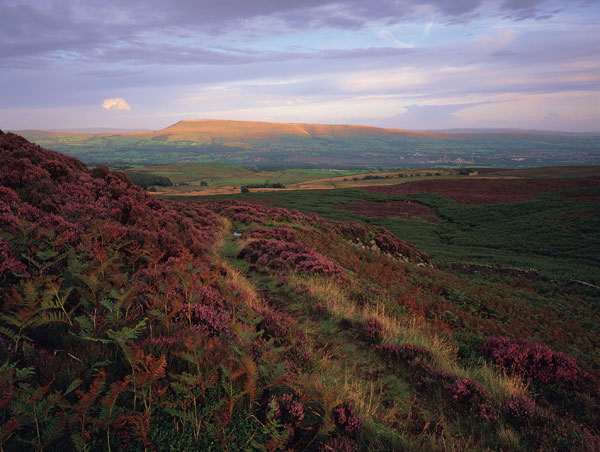 Pendle from Bradford Fell