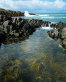 Rockpool, Isle of Tiree