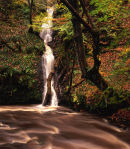 Roddlesworth waterfall