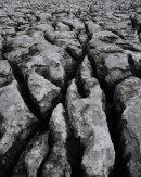 White Scar Limestone