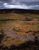 Winding Path, Winter Hill