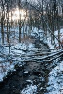 Winter, River Roddlesworth