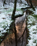 Winter Stream, Roddlesworth