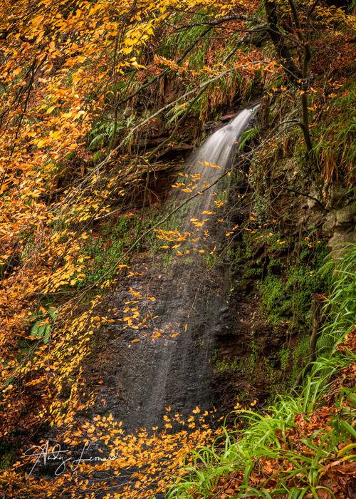 Rocks of Solitude, Edzell