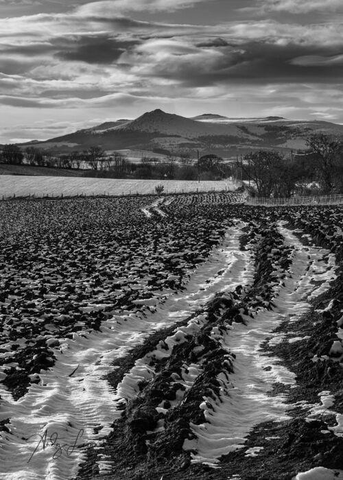 Bennachie, Aberdeenshire
