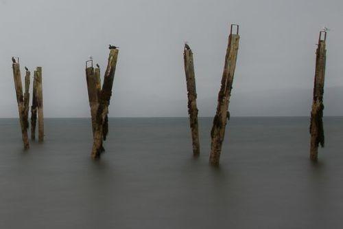 Salen Old Pier, Mull