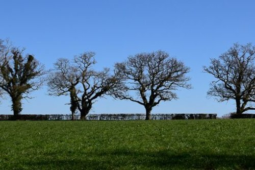 near Melbury Osmond, Dorset