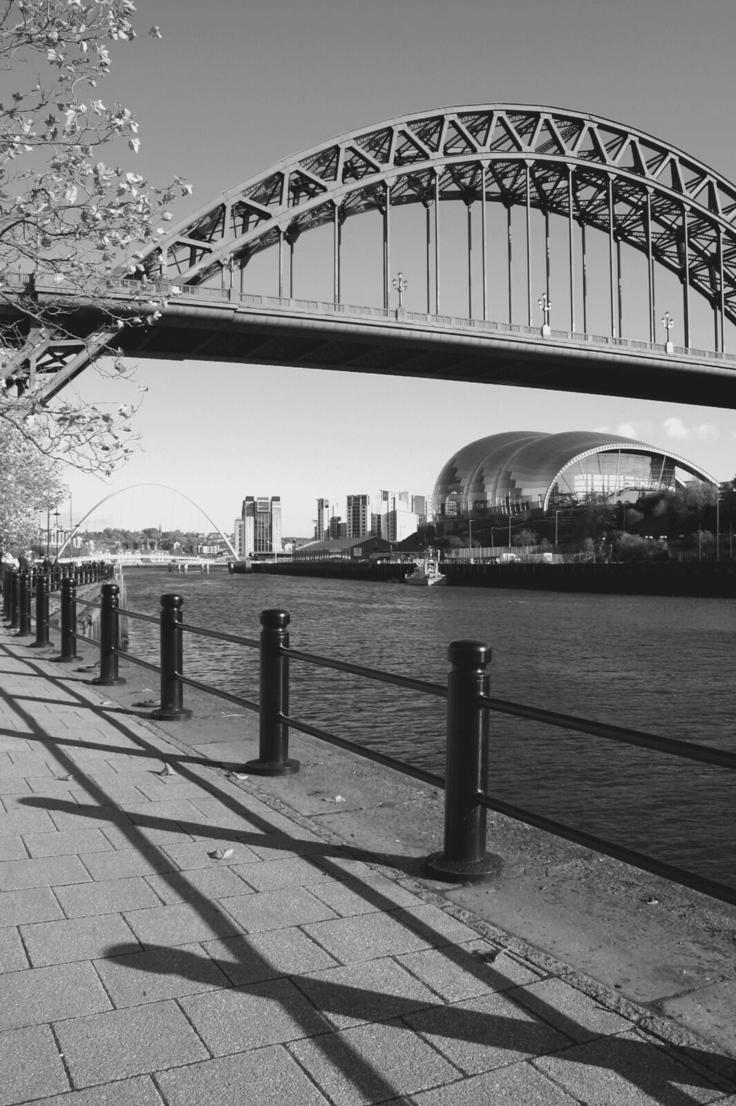 Newcastle Tyne Bridge Autumn