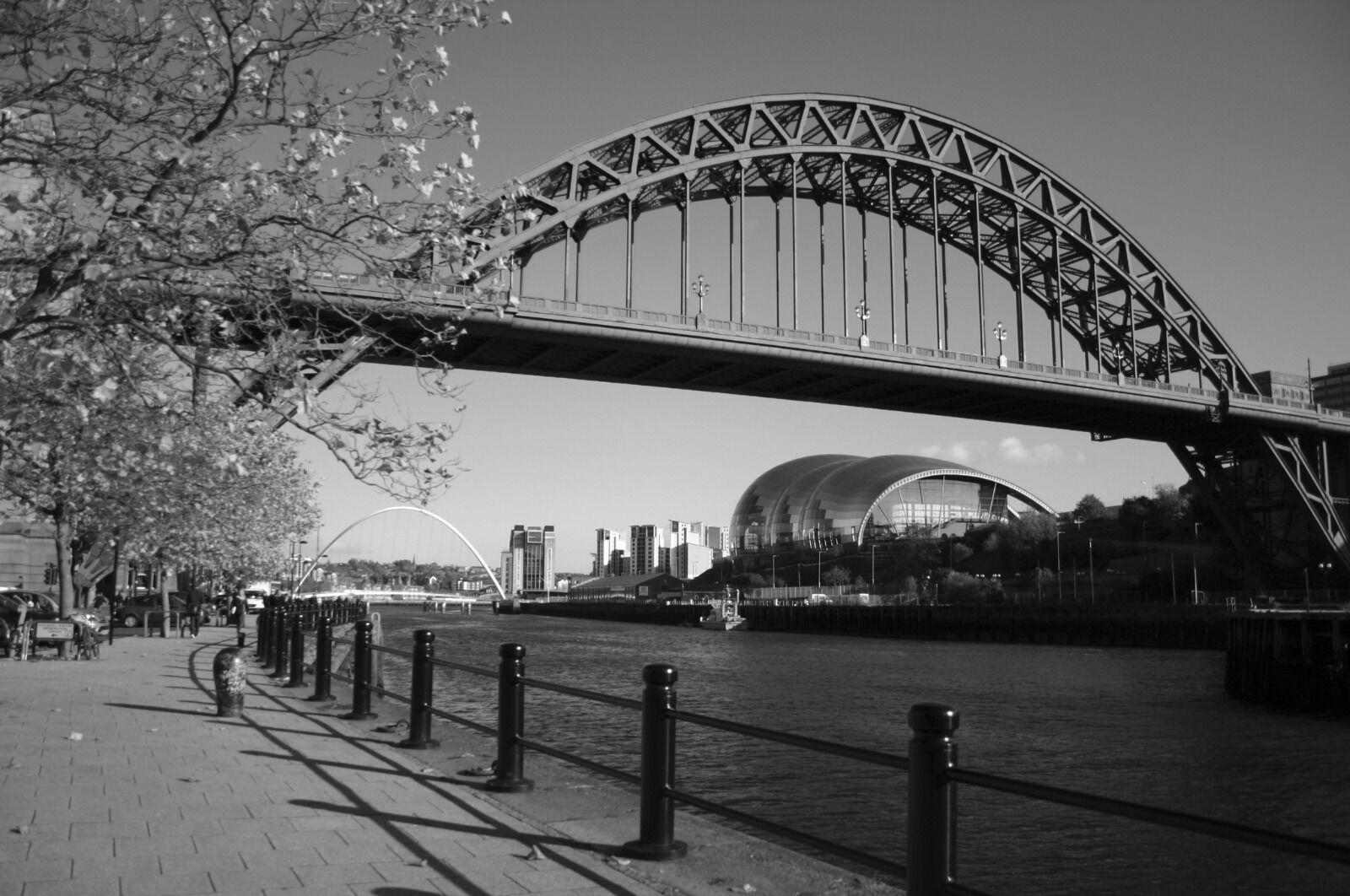 Autumn Tyne Bridge