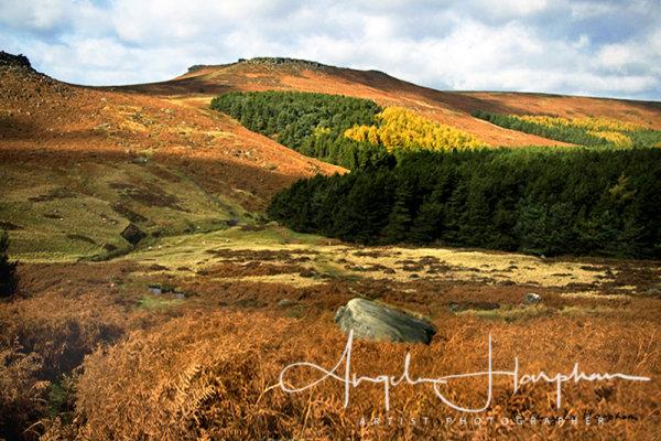 Autumn Light Burbage Moor Derbyshire