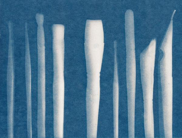 Cyanotype Brushes
