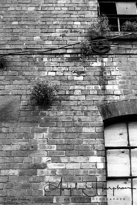 Grain Warehouse Sheffield