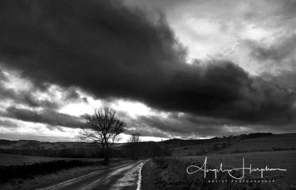 Derbyshire Moor