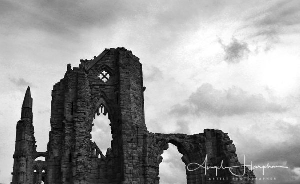 Whitby Gothic Abbey 2