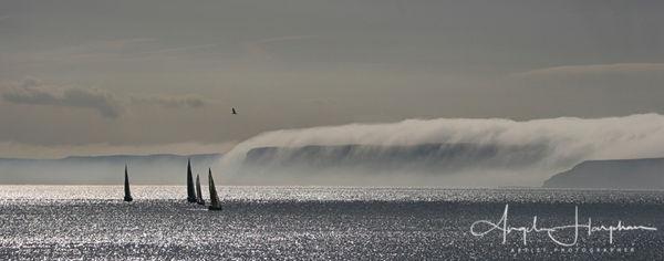 Misty Dawn Scarborough