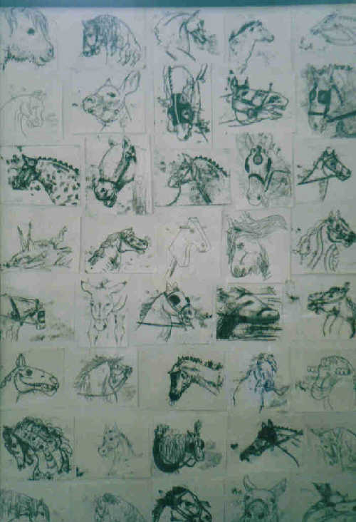 99 Physiognomical Equine Studies (detail)