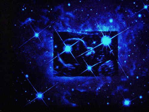 Scan Charl (+UV)