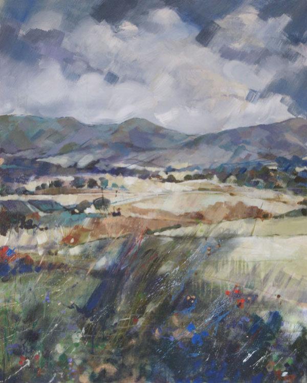 Aberdeenshire Heather Hills